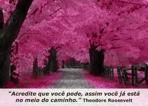 Minuto_Rosaset1